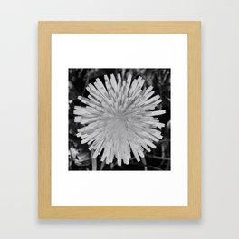 dandy! Framed Art Print