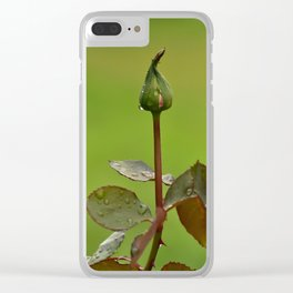Beginning to Bud Clear iPhone Case