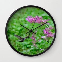 Feeding hummingbird 48 Wall Clock
