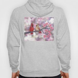 cardinals and crab apple blossoms Hoody