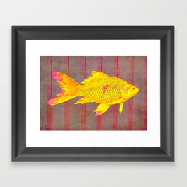Gold Fish on a Striped Background Framed Art Print