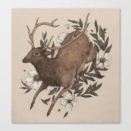 Floral Elk Canvas Print