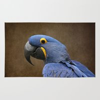 uncharted Area & Throw Rugs featuring Beauty is an Enchanted Soul - Hyacinth Macaw - Anodorhynchus hyacinthinus by Sharon Mau