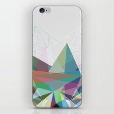 Colorflash 7 iPhone & iPod Skin