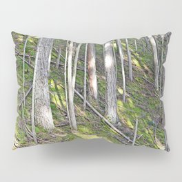 A MOSSY STEEP DEEP FOREST SLOPE Pillow Sham