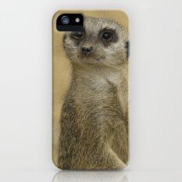 Frank the meerkat iPhone Case
