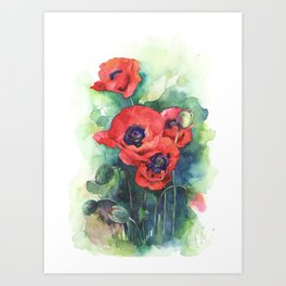 Watercolor red poppy flowers Art Print