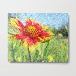 Red Flower in a Field Metal Print