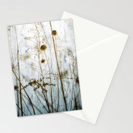 Rustic Blue Cream Dried Plants Stationery Cards