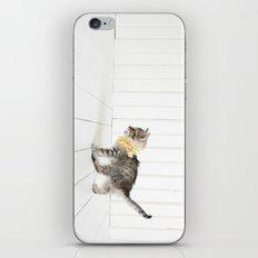 Small iPhone & iPod Skin