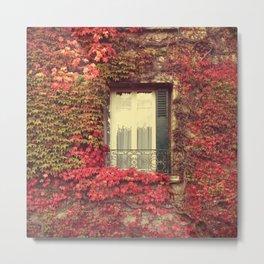 Ivy Window - Giverny, France Metal Print