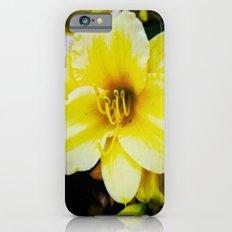 Slow Wilting Beauty iPhone 6s Slim Case