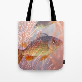Love is a Fish Tote Bag