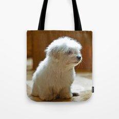 Coton de Tulear Puppy Tote Bag