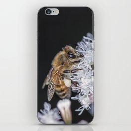 Autumn Honeybee iPhone Skin