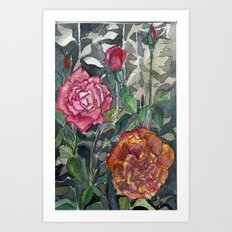 Beautiful Roses Art Print