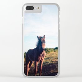 Dartmoor Pony Portrait (3) Clear iPhone Case
