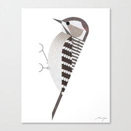 Japanese pygmy woodpecker Canvas Print
