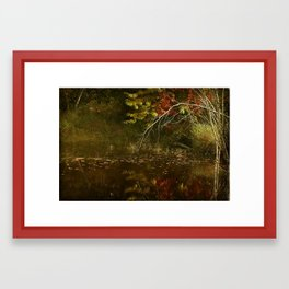 Weeping Branches Framed Art Print