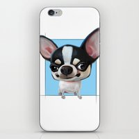 chihuahua iPhone & iPod Skins featuring Chihuahua by joearc