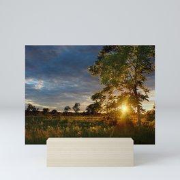 Golden Hour on the Prairie Mini Art Print