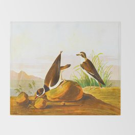 Ring Plover Bird Throw Blanket