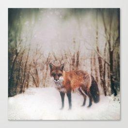 Winter Visitor Canvas Print