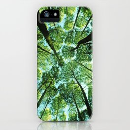Looking up in Woods iPhone Case