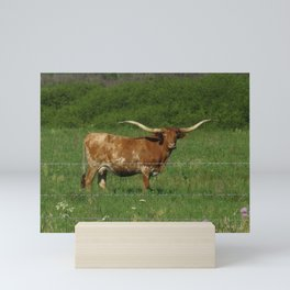Happy Texas Longhorn Mini Art Print