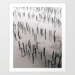 Flooded Crop Art Print