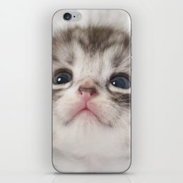 Cute kitten looking up at....? iPhone Skin