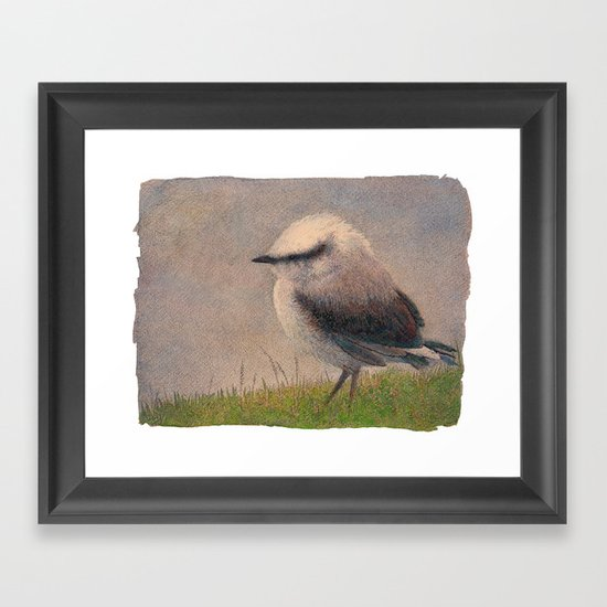 Nuthatch Framed Art Print