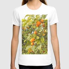 Fruits of Greece T-shirt