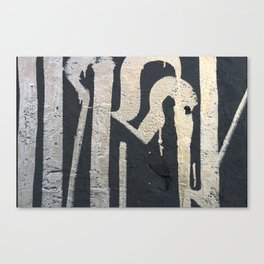 IRONY Canvas Print
