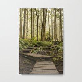 Cape Flattery Trail Metal Print