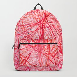 A Look Inside Backpack