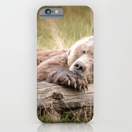 Big Beautiful Grizzly Bear Relaxing In Green Meadow Close Up Ultra HD iPhone Case