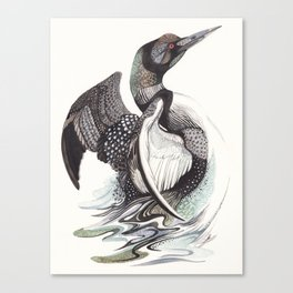 The Loon Canvas Print