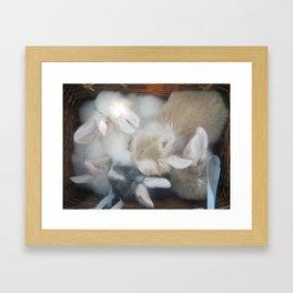 bunnies in a basket  Framed Art Print