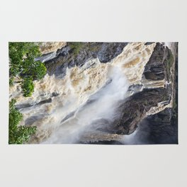 Enjoy the waterfall Rug