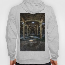 horizontal image of the hall with countless columns Hoody