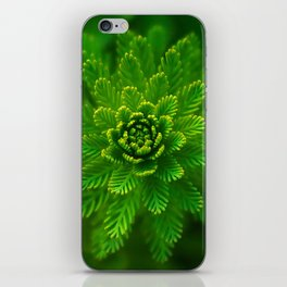 Water plant-green iPhone Skin