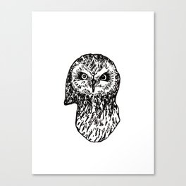 Staring Owl Canvas Print