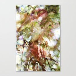 Colors in the Wind Canvas Print