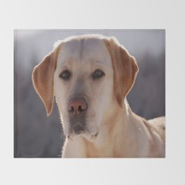 Portrait of A Golden Labrador Retriever Throw Blanket