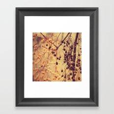 Autumn Life (II) Framed Art Print