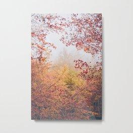 APARIGRAHA/beyond Metal Print