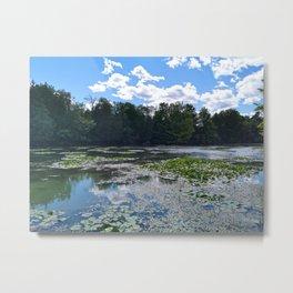 Lake With Lily Pads Metal Print