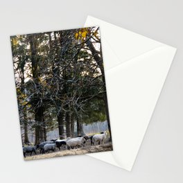 Lil Bo Peep's Forest Sheep Stationery Cards