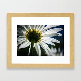 """""""White Flower"""" Framed Art Print"""